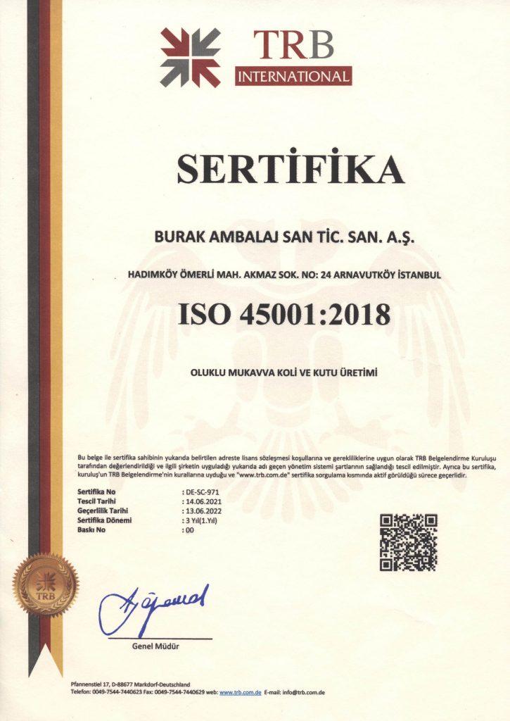 İş sağlığı ve güvenliği satandartları sertifikası